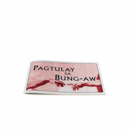 Bridging the Gap-Cebuano